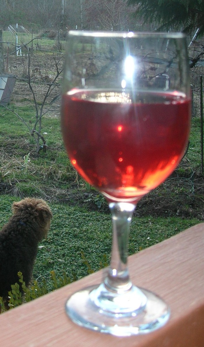 Heron Pond: First Glass of my Viento Red
